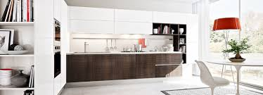 european kitchen design in new york city ny