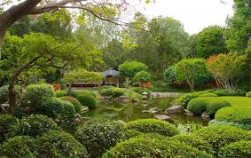 Botanical Gardens Brisbane Cafe City Botanical Gardens Brisbane Australia Tour Packages Royal