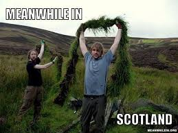 Funny Scottish Memes - meanwhile in funny meme pictures meanwhile in