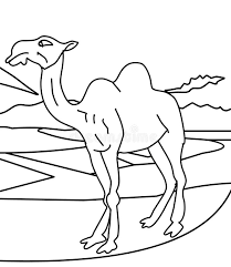 camel coloring page stock illustration image of child 87361868
