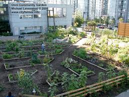 Urban Gardens Developer Expands Downtown Community Garden In Vancouver U2014 City