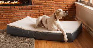 snoozer dog beds and sofas couches outdoor beds collection