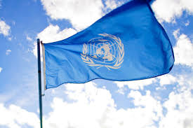 flag of the world health organization a new world health organization the search for a director general