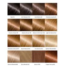 hair color chart an entire hair color chart for hair extensions glossie hair