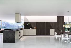 kitchen modern kitchens of buffalo decor color ideas marvelous