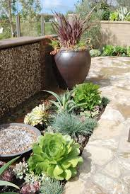 desert landscaping ideas garden ideas