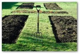 Backyard Soil Planning A Home Vegetable Garden