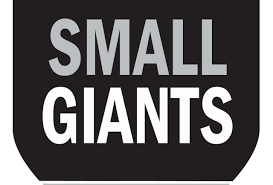 small forbes small giants 2017 america u0027s best small companies