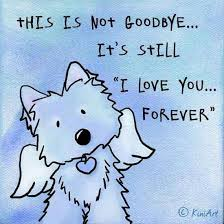 loss of dog 25 best ideas about pet loss on dog loss dog loss 572210