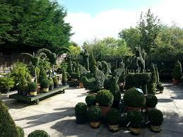twinlocks garden centre home