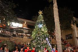 celebration fl christmas lights christmas on third tree lighting celebration naples