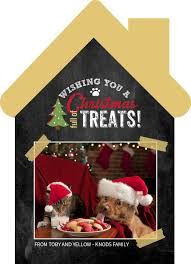 christmas full of treats pet photo card by purpletrail com plus