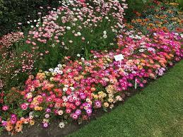 the botanical garden picture of national botanic gardens dublin
