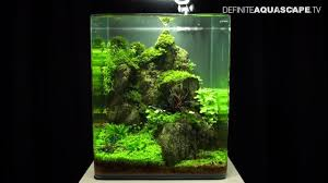 Planted Aquarium Aquascaping Aquascaping The Art Of The Planted Aquarium 2013 Nano