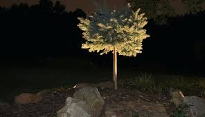 Landscape Up Lights Landscape Up Lighting Low Voltage Landscape Lighting In Landscape