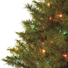 lit balsam fir tree