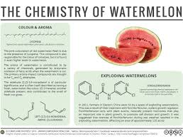 chemistry of watermelons food science pinterest chemistry