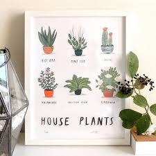 house plants print by alex foster illustration
