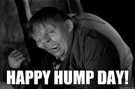 Happy Hump Day Memes - sexy hump day memes 28 images good afternoon meme good afternoon