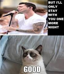 Grumpy Cat Meme Good - one more night grumpy cat meme by rosemariealexandra on deviantart