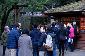 Muir Woods Map Muir Woods Visit By Car Or Bus To Require Making Reservation