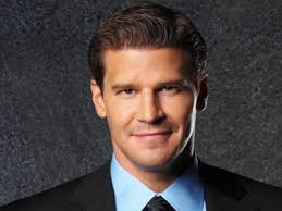 Hair Style Photo Booth   what hair style do you prefer seeley booth fanpop