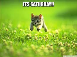 Saturday Meme - saturday