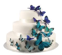 butterfly cake painted something blue butterfly cake decoration hansonellis