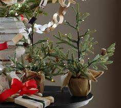 lit potted pine trees from potterybarn these could really go