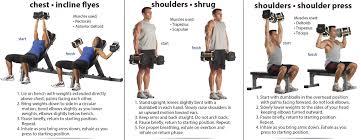 Dumbbell Exercises On Bench Dumbbell Exercises