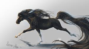 wallpaper horse hooves 5k 4k wallpaper mane galloping black