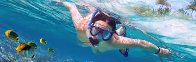 Louisiana snorkeling images How to pack snorkel gear in your luggage smartertravel jpg