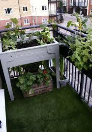 floor plants home decor easter garden decorations balcony gardens ideas floor plants home