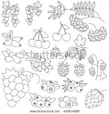 berry colored coloring book stock vector 453614989
