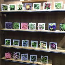 online get cheap artificial plants for living room aliexpress com