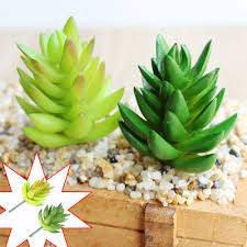 online shop artificial succulents plants garden grass desert