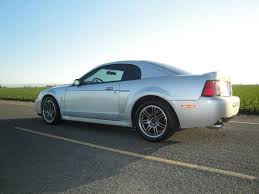 2003 Mustang Cobra Black Special Editions