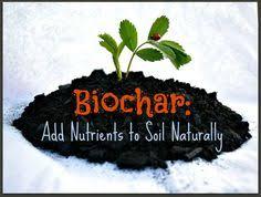 Garden Soil Types - soil types and natural soil amendments soil type gardens and