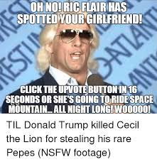 Ric Flair Memes - oh no ric flair has spotted your girlfriend click the