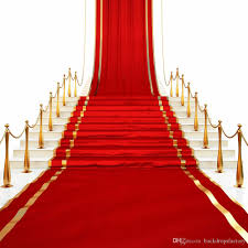 2018 red carpet romantic wedding photographic backgrounds vinyl