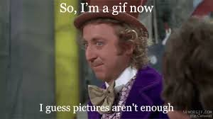 Funny Willy Wonka Memes - willy wonka meme funny or media quotes pinterest willy wonka