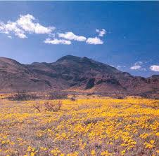 Texas mountains images 32 best franklin mountains images mountains el jpg
