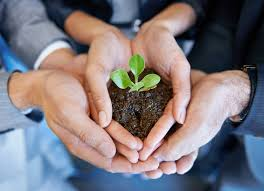organizational culture and organizational life u2013 hope for the