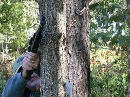 hunting handguns afield on airguns