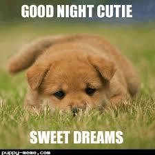 Sweet Dreams Meme - 1493929642915 png