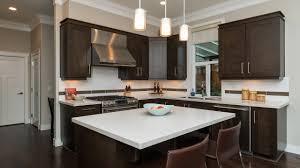 kitchen cabinets in surrey 100 kitchen cabinets surrey kitchen tamilnadu kitchen norma