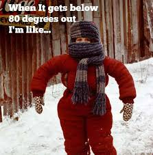 Funny Cold Weather Memes - 10 reasons texans hate cold weather