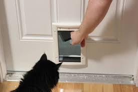 installing pet door in glass door installing a cat door youtube
