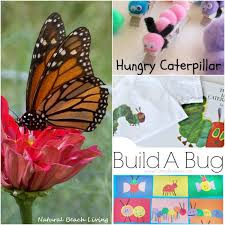 caterpillar butterfly ideas linky 60 living