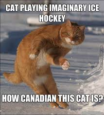 Canada Hockey Meme - canadian cat by thealmighty meme center
